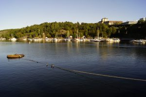 Mycket vatten i förgrunden, men segelbåtar som guppar längs med bryggorna på andra sidan viken.