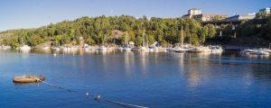 Sommarbild vid vattnet. Massor av båtar ligger i bakgrunden, medan ankor sitter på en lina i framgrundne